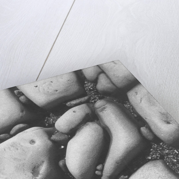 Beach Rocks by Brett Weston