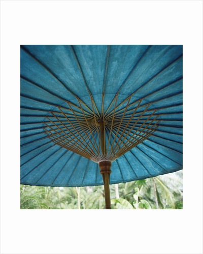 Teal-Colored Traditional Paper Parasol by Corbis