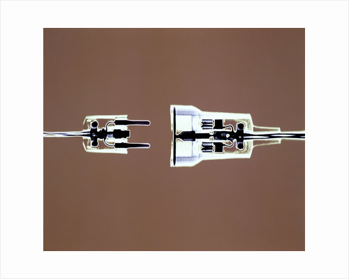 Cross-section of Electrical Plug by Corbis