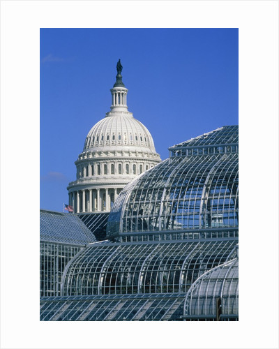 United States Botanic Garden Conservatory and Capitol, Washington DC, USA by Corbis