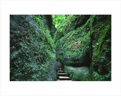 Stairs to the Mary's gorge by Corbis