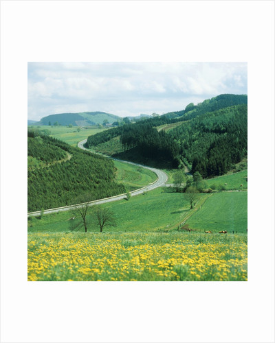 Landscape and country road in the Sauerland, Germany by Corbis