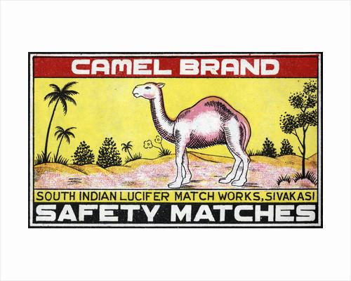 Camel Brand Indian Matchbox Label by Corbis