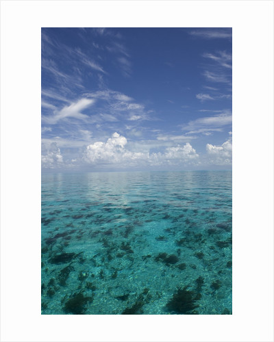 Calm Ocean Water in the Bahamas by Corbis
