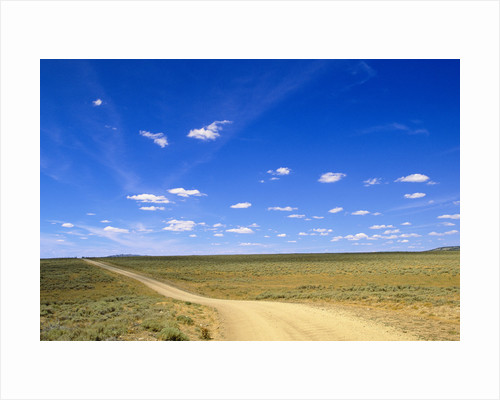 Blue Sky Above Ranch Road by Corbis