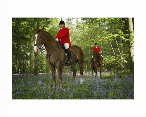 Two Mounted Huntsmen in Forest by Corbis