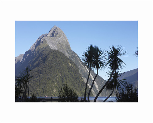 Mountains and Palm Trees Along Fjord by Corbis