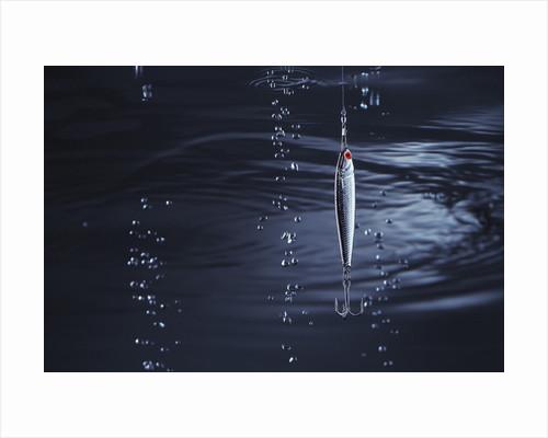 Fishhook by Corbis