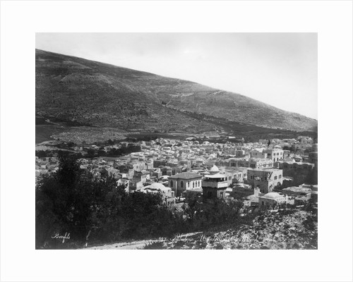 Overview of Palestine by Corbis