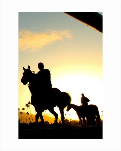 2006 Santa Anita Derby by Corbis