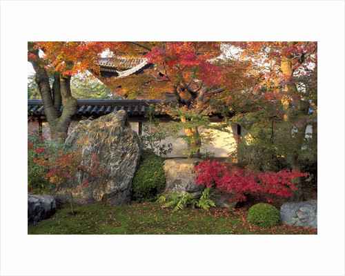Autumn Foliage in Japanese Garden by Corbis