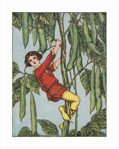 Illustration of Jack Climbing the Beanstalk by Elizabeth Colborne