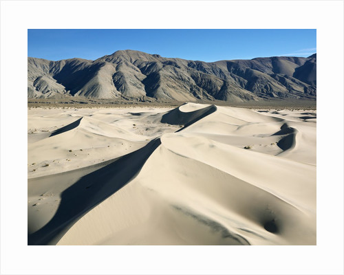 Sand Dunes by Corbis