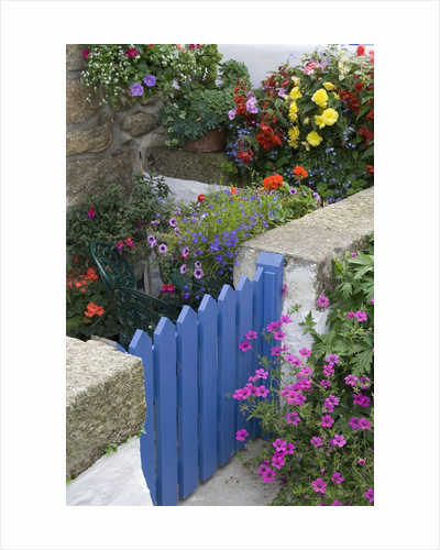 Blue Garden Gate in Spring Garden by Corbis