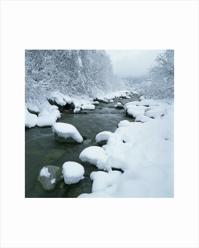 Snowy Riverbank by Corbis