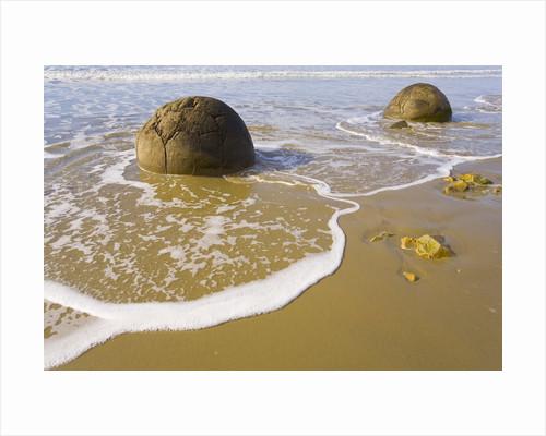 Large Moeraki Boulders on Koekoche Beach by Corbis