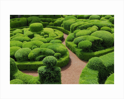 Topiary Garden at Chateau de Marqueyssac by Corbis
