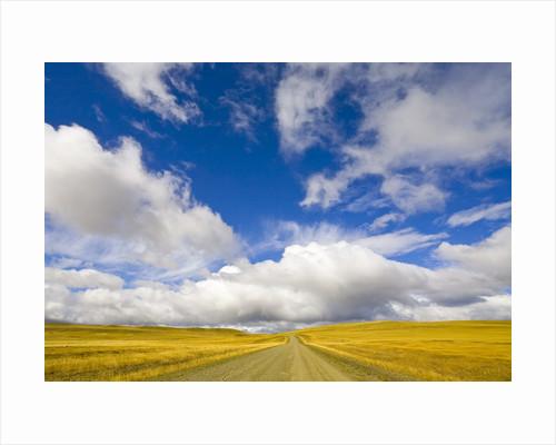 Cumulus Clouds above Rural Road by Corbis