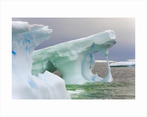Sculpted Icebergs Floating in Ocean by Corbis