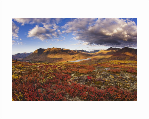 Mountains in fall colors by Corbis