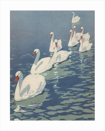 Illustration of Flock of Swans by Coles Phillips