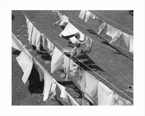 1950s Woman Hanging Laundry Outdoors On Several Clotheslines by Corbis