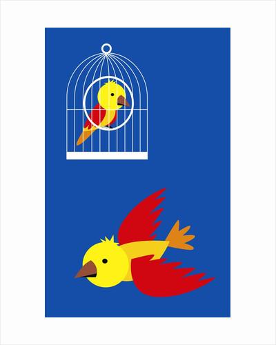 bird in cage, flying bird by Corbis