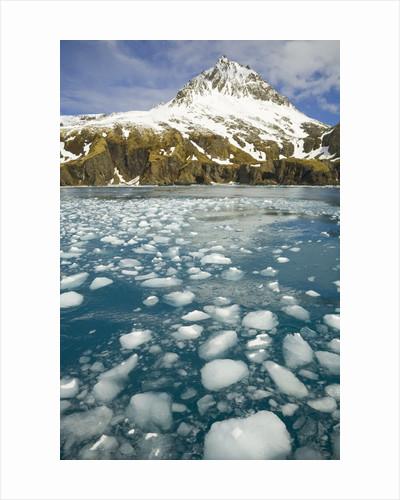 Ice Chunks From Twitcher Glacier Below the Salvesen Range by Corbis