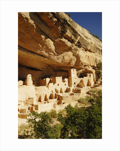 Cliff Palace in Mesa Verde National Park by Corbis