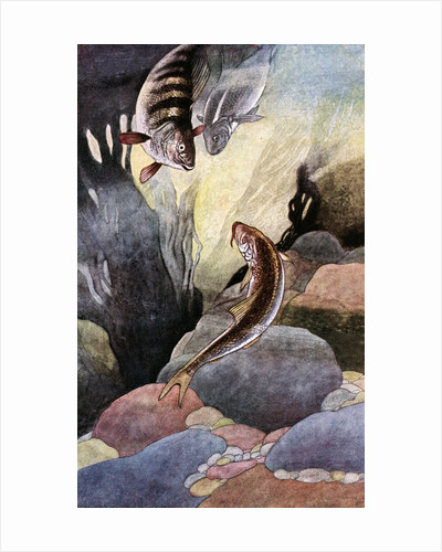 Illustration of Magical Fish by Charles Robinson