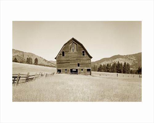 Barn in a Golden Field by Tom Marks