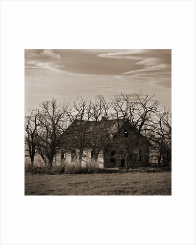 Abandoned House Surrounded by Trees by Tom Marks