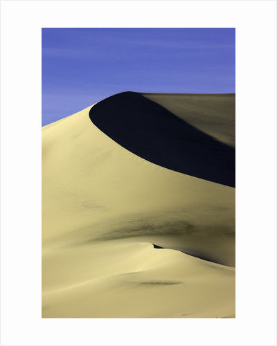 Sand dune at Eureka Valley Dunes in Death Valley National Park by Corbis