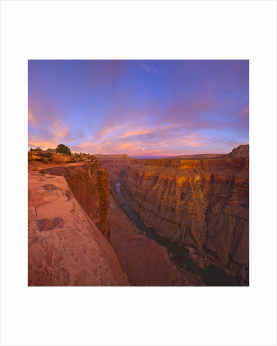 Full moon over Toroweap Point in Grand Canyon National Park by Corbis