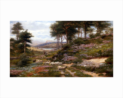 Through the Heather, Dunkeld, Scotland, United Kingdom by George Vicat Cole