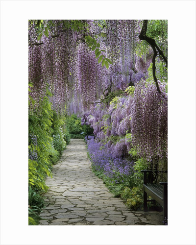 Spring garden by Corbis