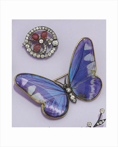 Victorian butterfly brooch by Corbis