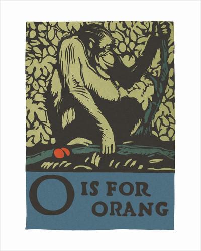 O is for orangutan by Corbis