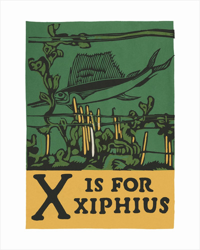 X is for xiphius by Corbis