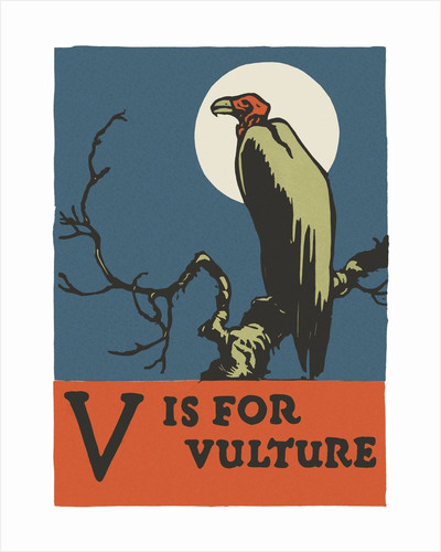 V is for vulture by Corbis