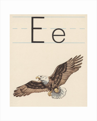 E is for eagle by Corbis