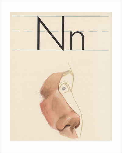 N is for nose by Corbis
