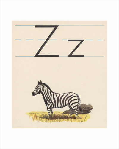 Z is for zebra by Corbis