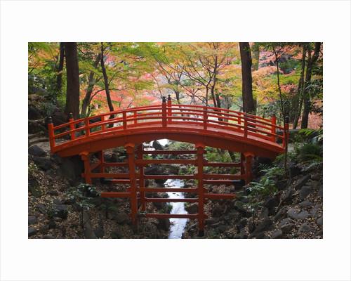 Tsutenkyo Bridge by Corbis