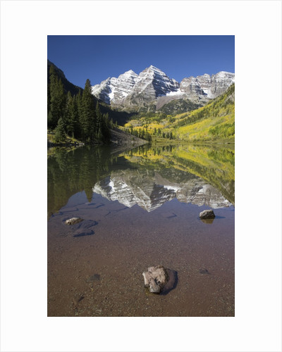 Aspens reflecting in lake under Maroon Bells, Colorado by Corbis