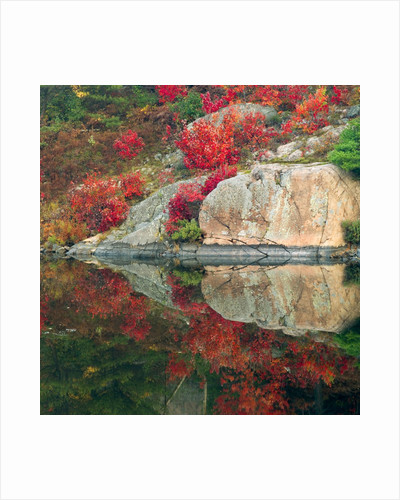 Autumn Colour Reflected in Murdock River, Sudbury, Ontario, Canada. by Corbis