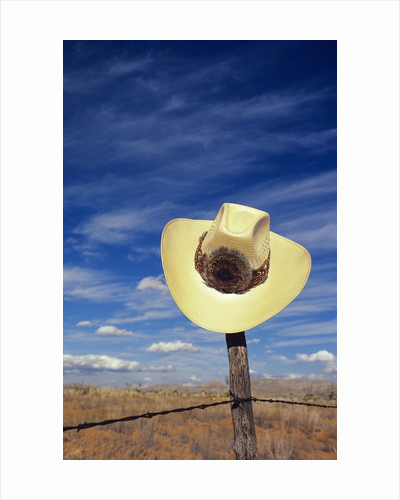 Cowboy Hat on Barbed Wire Fence, British Columbia, Canada. by Corbis