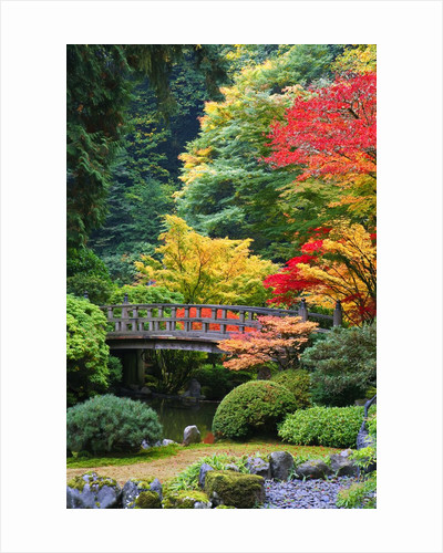 Bridge in Japanese Garden by Corbis