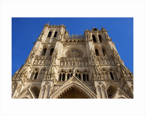 Notre-Dame d'Amiens Cathedral by Corbis