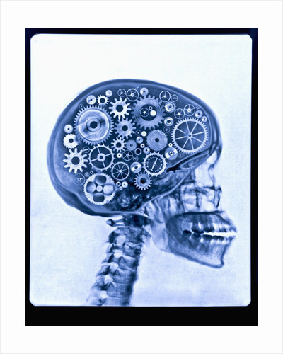 X-ray of skull with gears by Corbis